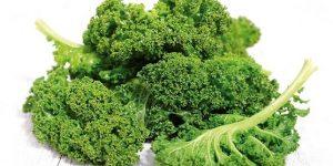 VALOR NUTRICIONAL DEL KALE » Usos, propiedades y calorías